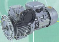 Buy CHV Speed Variator
