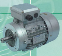 Buy Electric Motor