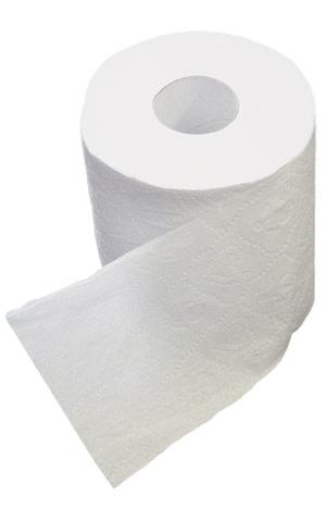 toilet paper for sale cape town