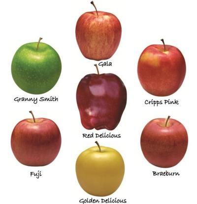 Buy Fresh Galla Apple