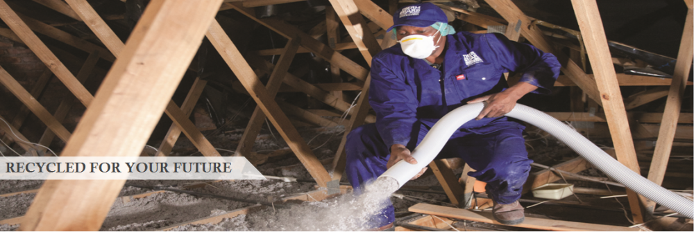 Buy Thermguard Roof Insulation