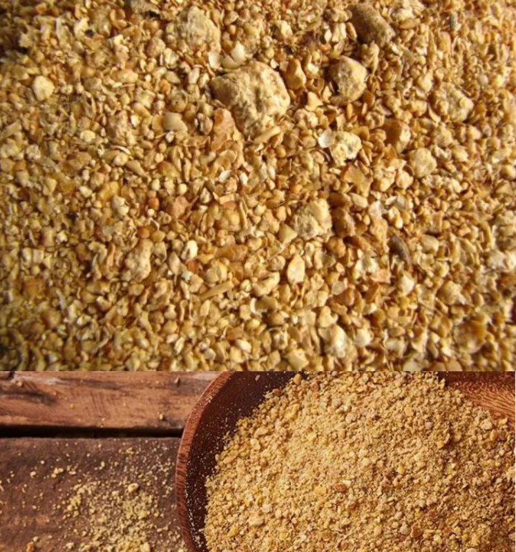 Soybean Meal / GMO (ANIMAL FEED)