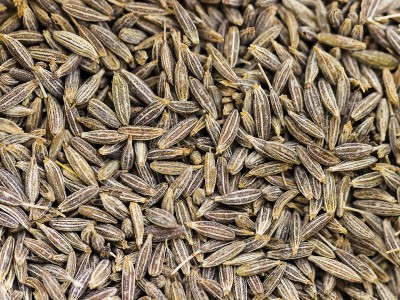 Cumin Seeds - Best Quality and Price