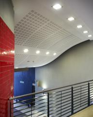 Gyptone acoustic ceiling systems