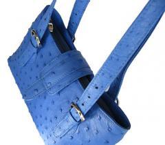 Blue Ostrich Bag
