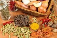 Continental Fix Fresh Food Additives