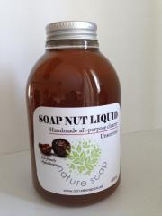 Soap nut liquid
