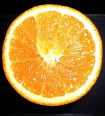 Fresh Naval and Valencia Oranges Naval and