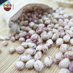 Kidney beans ,Arabica  coffee beans