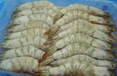 Frozen White Shrimp