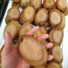 Cheap Quality Dried Abalone
