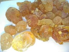 Gum Arabic / Quality Gum Arabic for sale