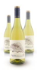 Viognier Grenache Blanc 2010 Wine