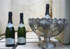 Franschhoek Pass Morena Cap Classique Wine