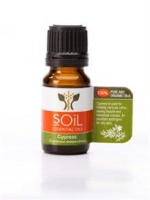 Cypress Essential Oil 10ml Certified Organic