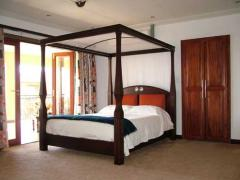 Noel Williams Canopy Bed Frame