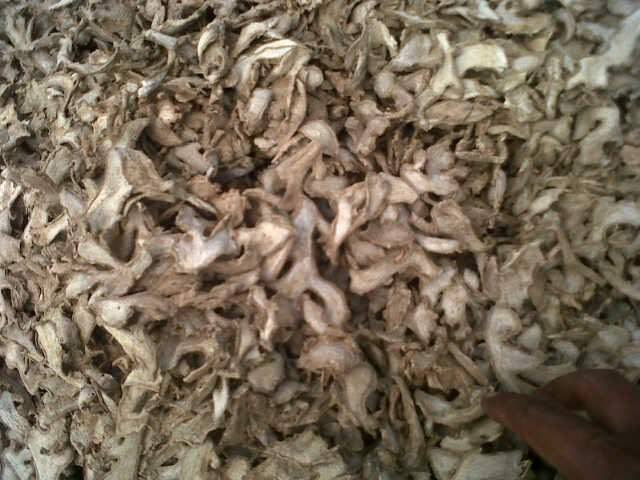 dried_and_fresh_ginger