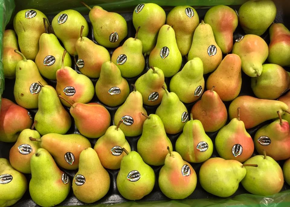 fresh_pear