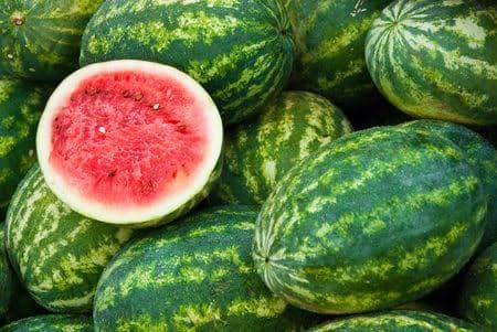 fresh_water_melons