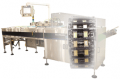 Dual Lane Horizontal Form/Fill/Seal Packaging Machine