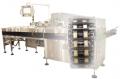 Dual Lane Horizontal Form/Fill/Seal Packaging Machine