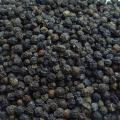 Black Pepper Exporters