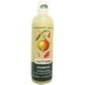 Earthsap Pomegranate and Soy Shampoo