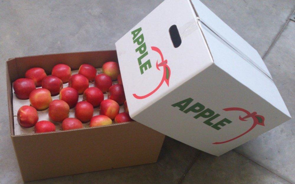 Order Fresh Apples